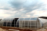 Ukraine's Largest Greenhouse Complex to Open in Ternopil Region in September